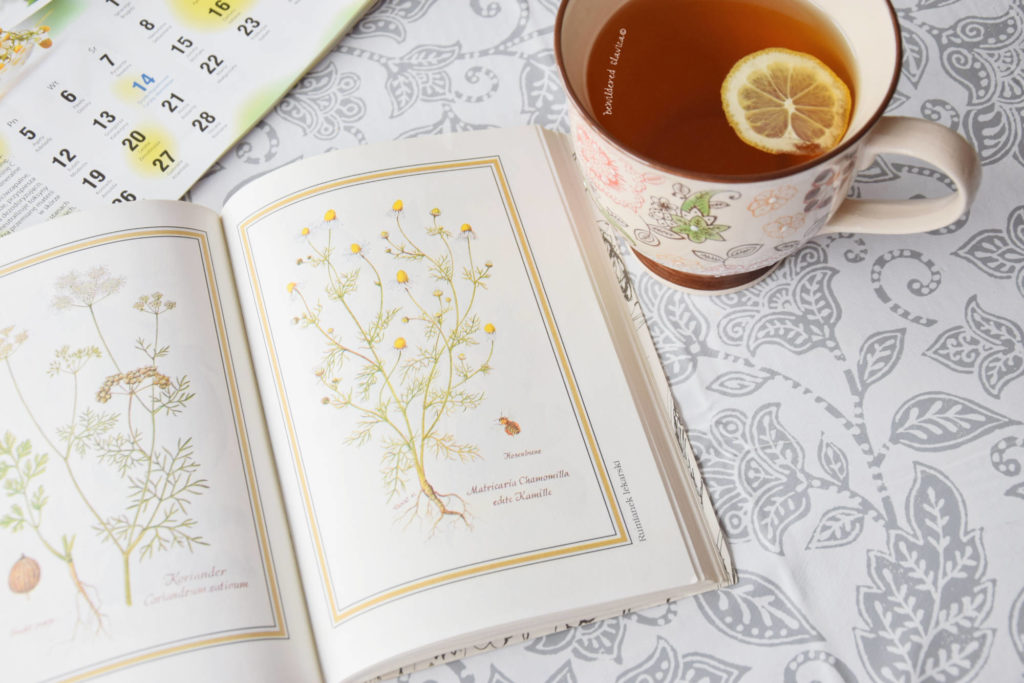 herbal tea cleanse camomile infuse herbata atay caj rumianek kamilica cytryna rozgrzewajacy napar przepis jak zrobic zaparzyc wywar odwar