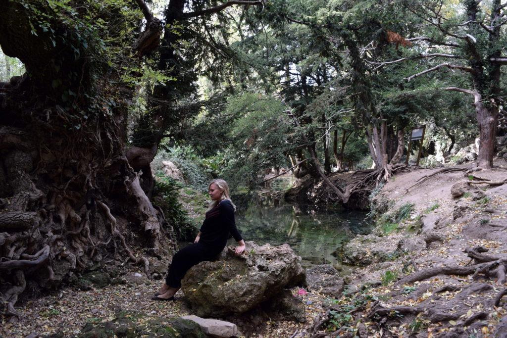 Ain Vittel, piękny las w pobliżu Ifrane