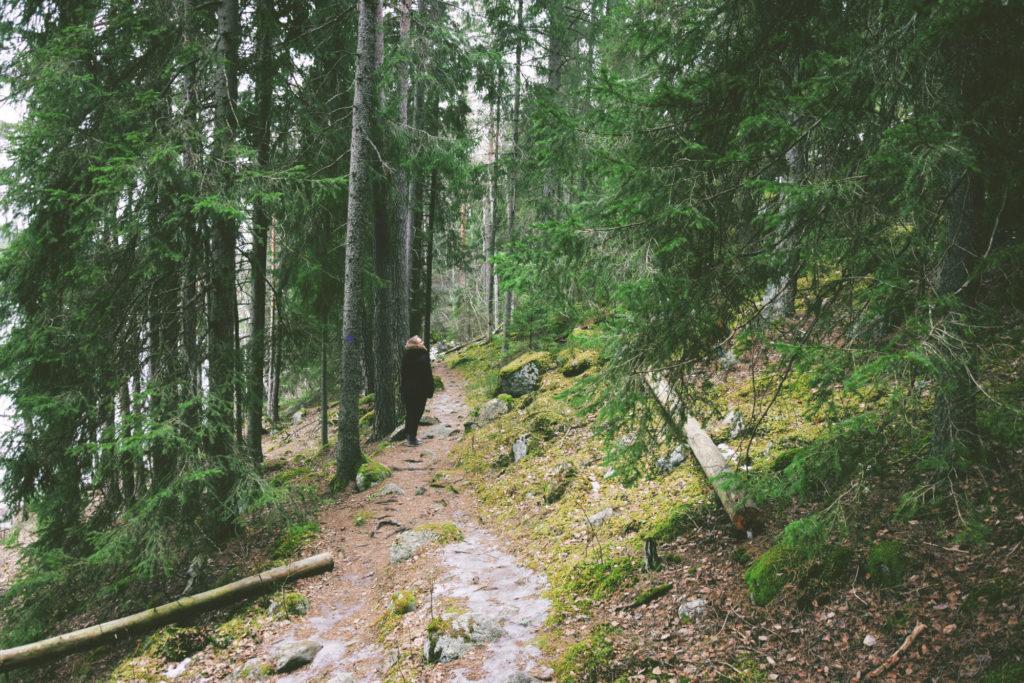 red scandinavian house swedish woods domek czerwony chatka cabin woodland slavic girl słowianska szwcja svenska sverige dziewczyna las forest nature therapy haga parken