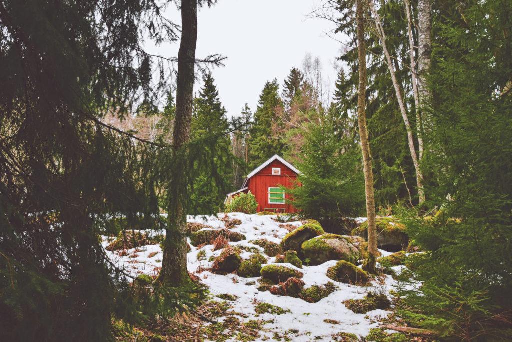 red Rövallsmossens Naturreservat sverige sweden swedish szwecja skandynawia natura rezerwat reserve park scandinavian house swedish woods domek czerwony chatka cabin woodland slavic girl słowianska szwcja svenska sverige dziewczyna las forest nature therapy haga parken