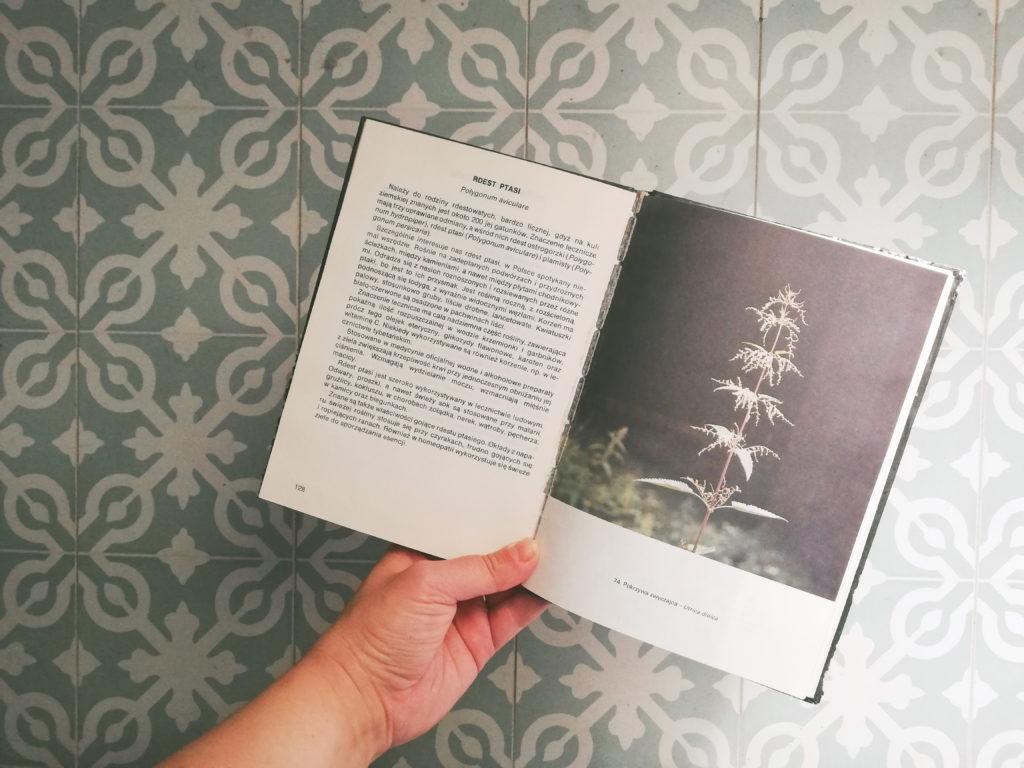 rosliny uzyteczne czlowiekowi ksiazka