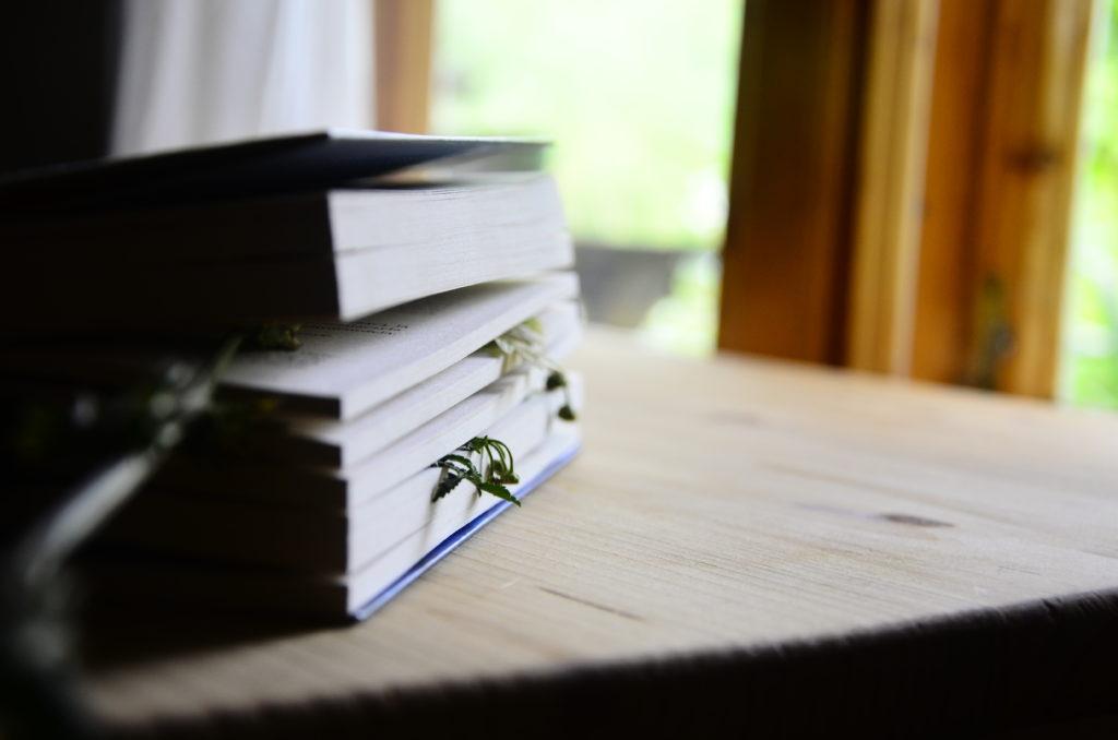 slavic boom blog wiktoria korzeniewska słowiańskie książki