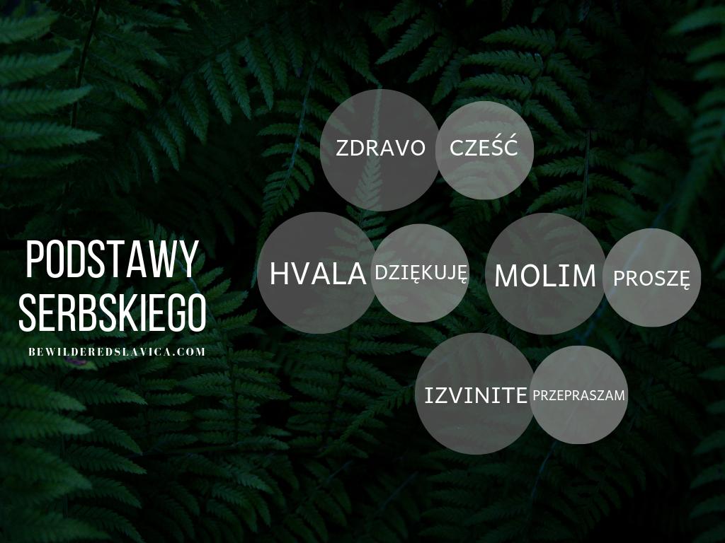 serbski dla polaków nauka język korepetycje prywatne lekcje skype