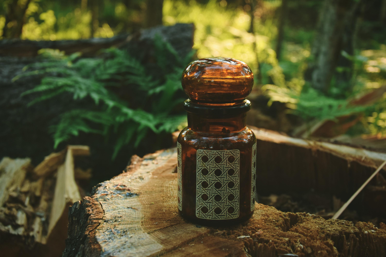 Perfumy, które pachną lasem – chatka szeptuchy we flakonie