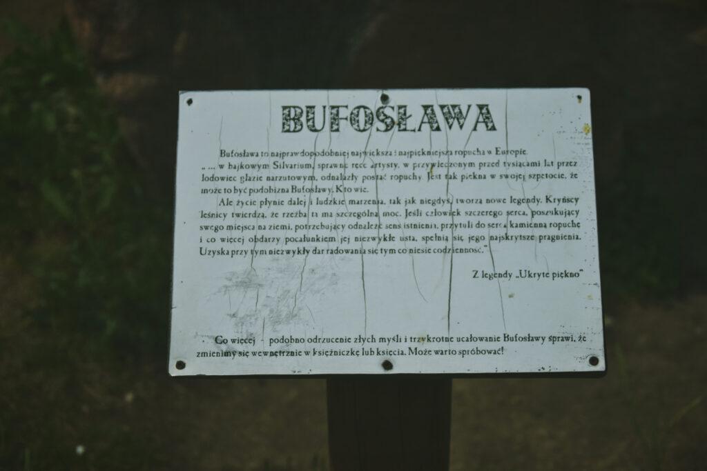 Buza, napój jaglany z przedwojennego Białegostoku. Restauracja Esperanto