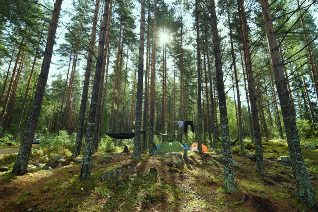 biwak allemansratten szwecja namiot milworld outdoor gear outdoorexperten