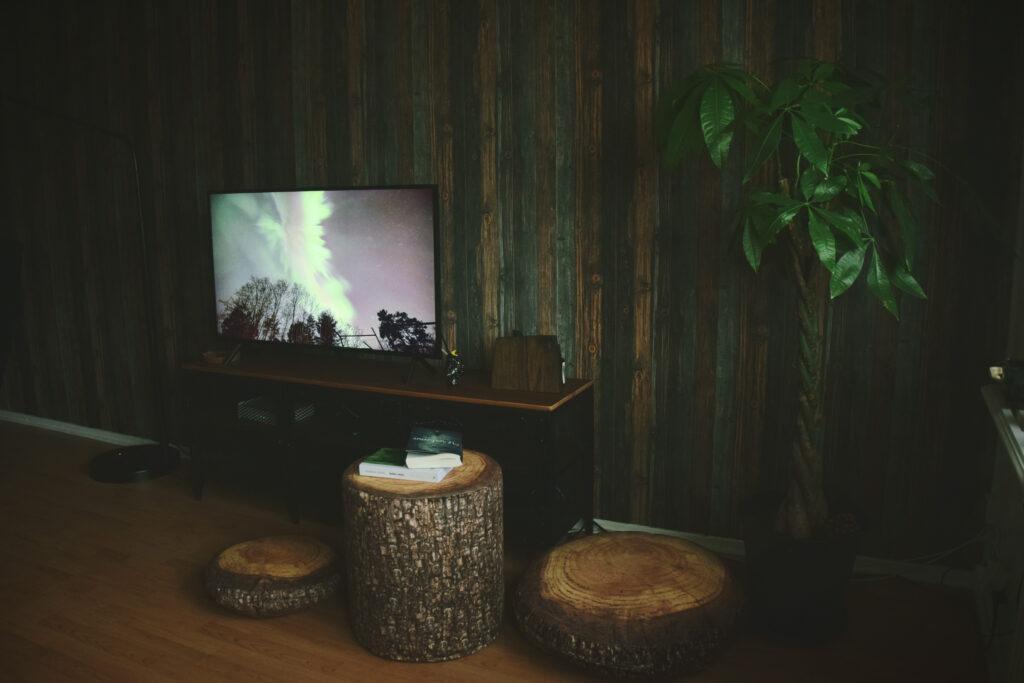 leśne dodatki wnętrza domu pufa leśny motyw tapeta las mero wings stolik ora drzewa pień
