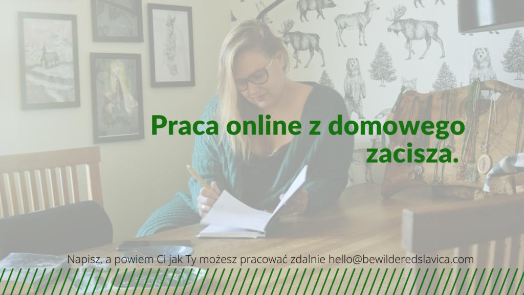 praca zdalna online z domu jak zacząć network marketing dodatkowa odnoga finansowa